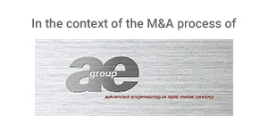 ae group (Conceptual preparation of an M&A process)